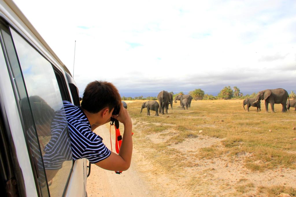 Watching the elephants at Amboseli National Park, Kenya