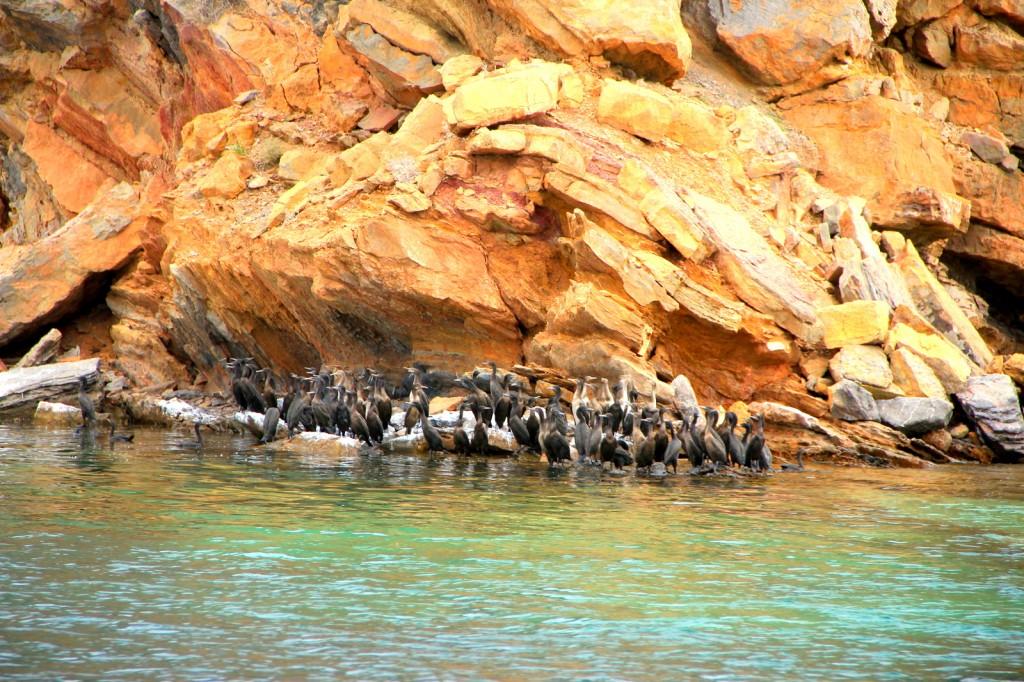 Stunning Omani Fjords