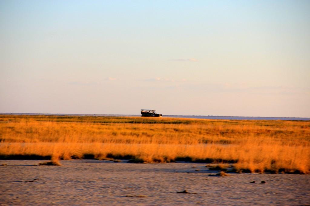 The Serene Makgadikgadi Pan