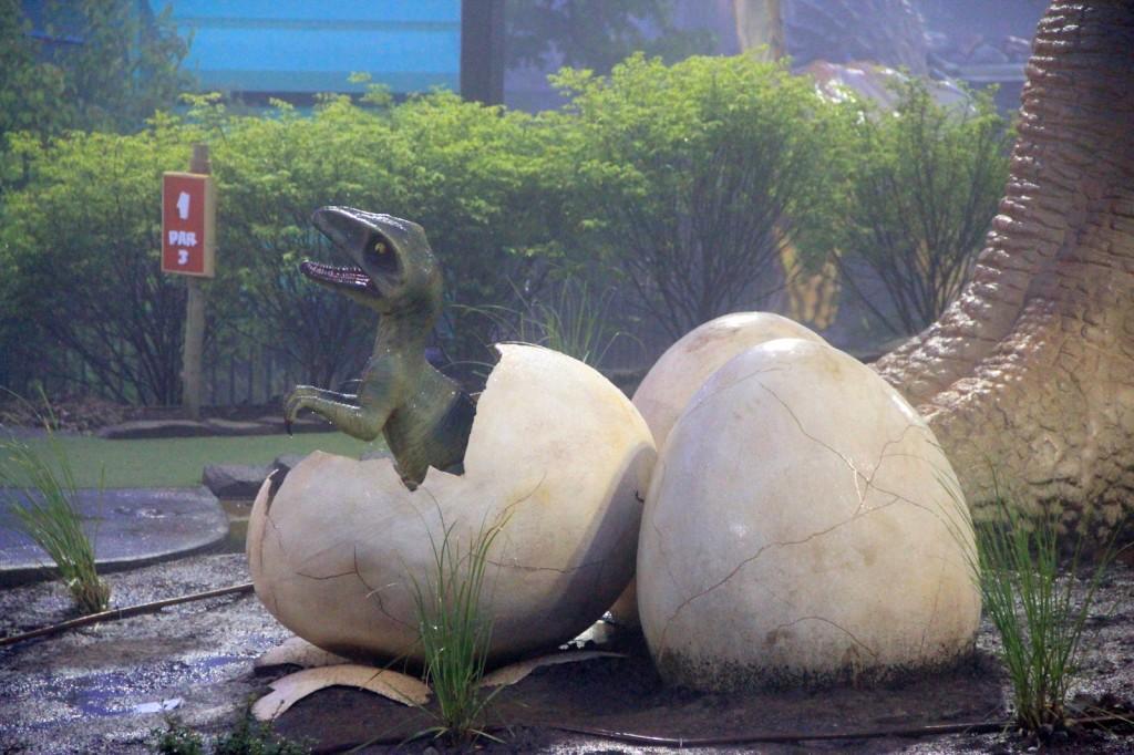 Baby of Velociraptor