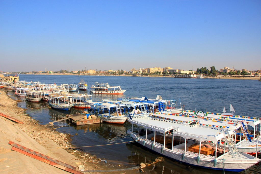 No business in the Nile River! :-(