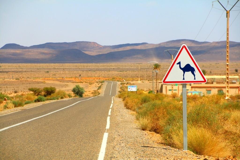 En-route to the Sahara Desert