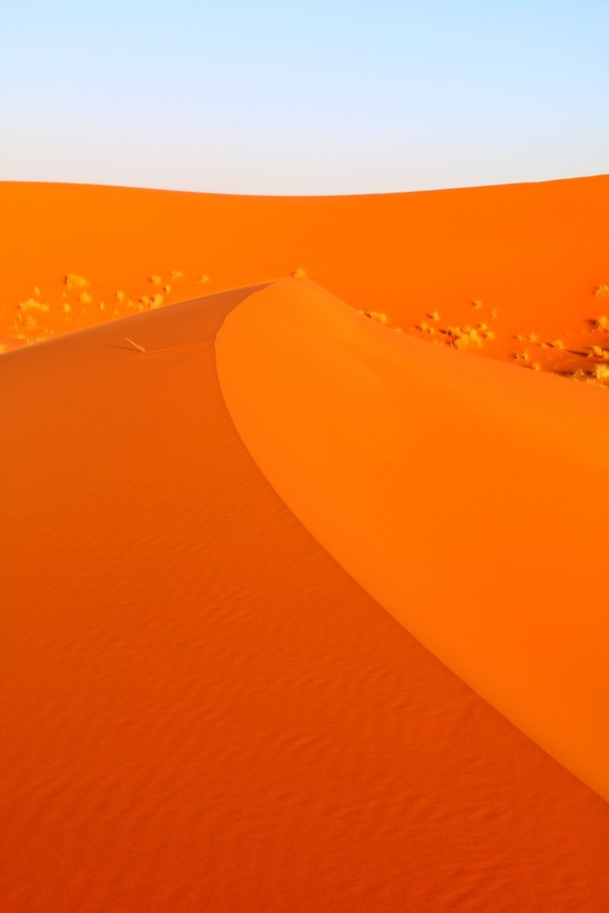 The Great Sahara Desert! Like curry powder! haha