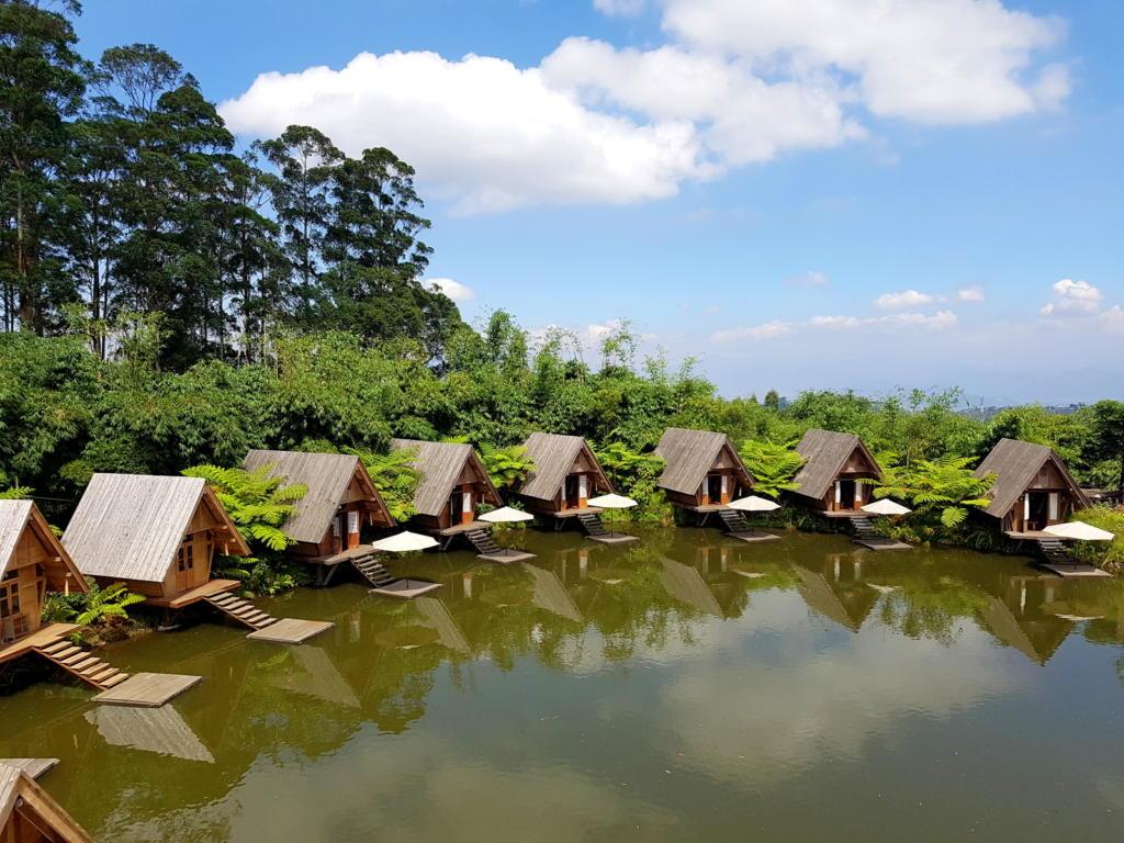 Dusan Bambu