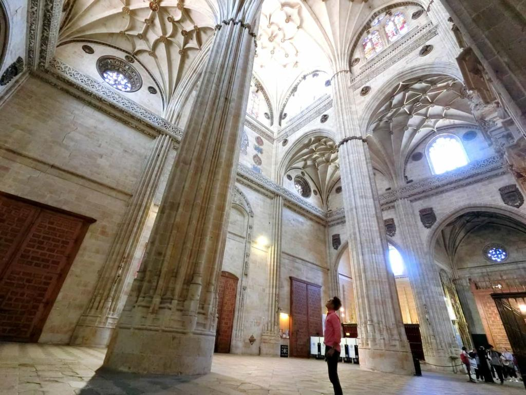 New Cathedral Salamanca