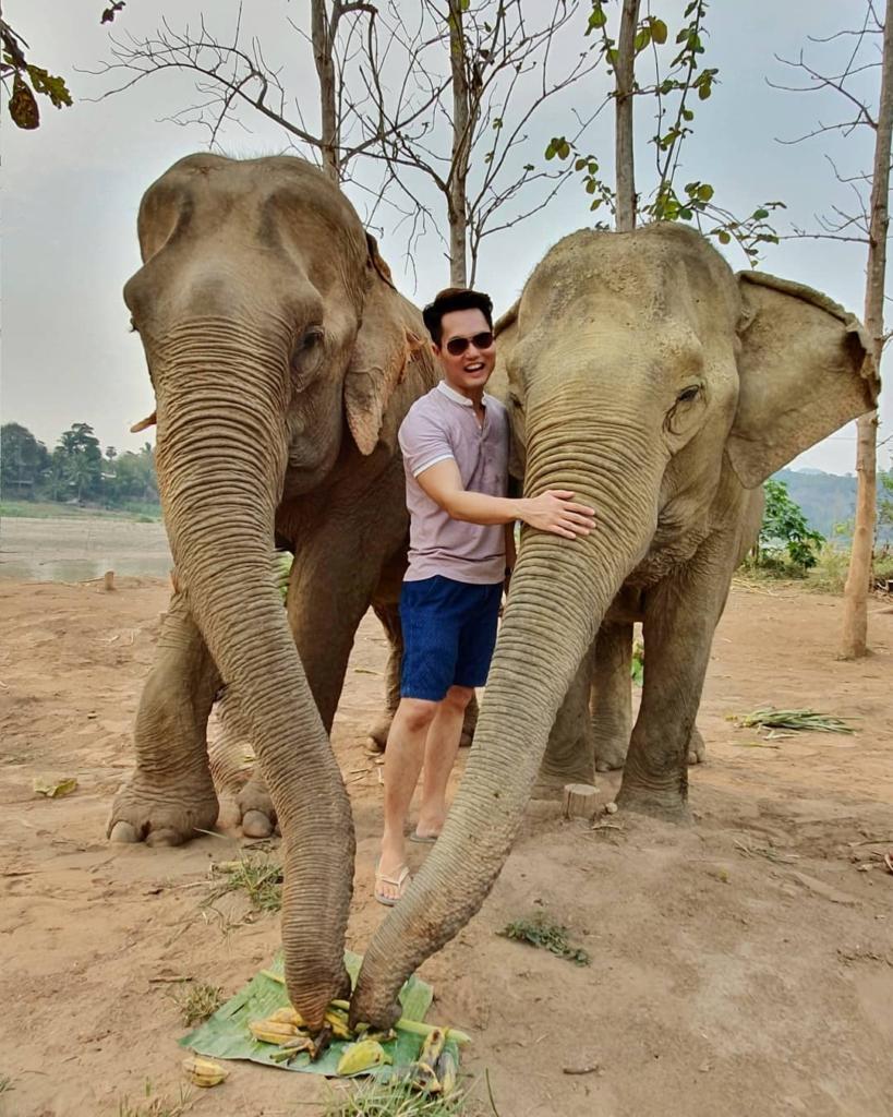 Hug The Elephants Luang Prabang